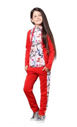 Спортивні костюми Костюм спорт. Туфли  Красный фото